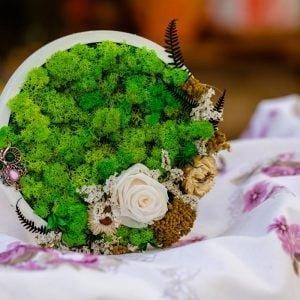 Tablou cu licheni Green