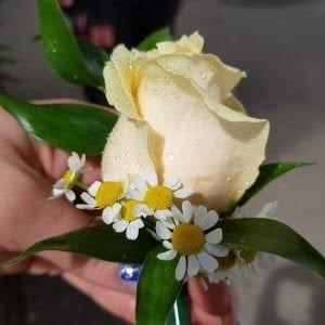 Cocardă cu trandafiri